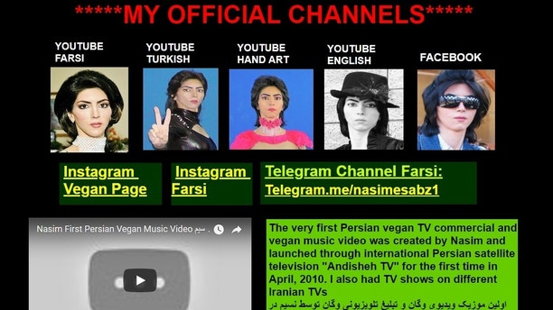 Nasim Aghdam website