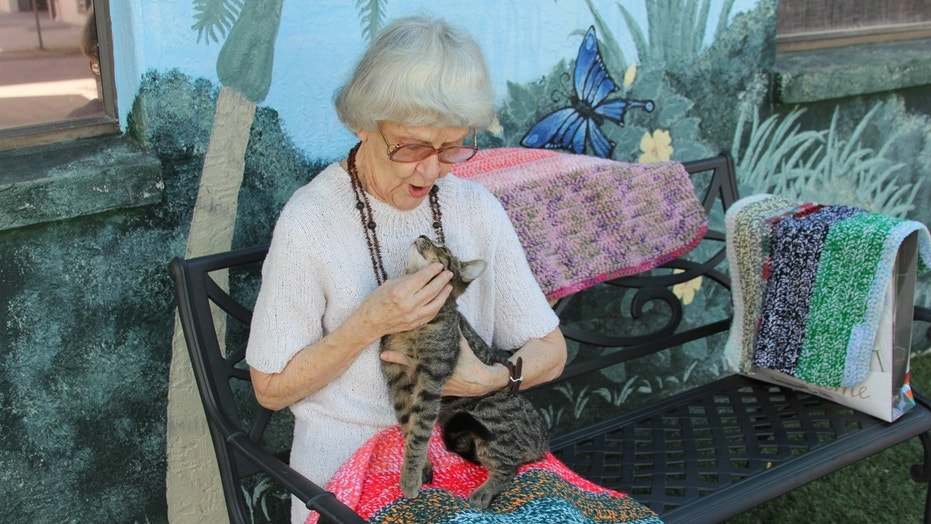 Officials say 90-year-old Marilyn knits blankets for cats at an animal shelter, but needs more yarn.
