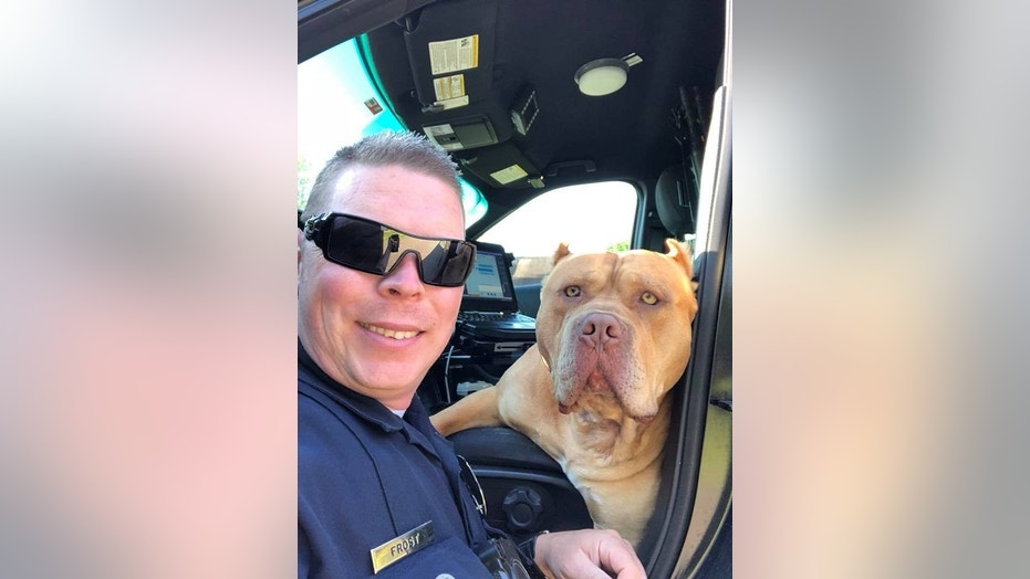 One Texas police department took to Facebook on Sunday, where it described an officer's encounter with a dog.