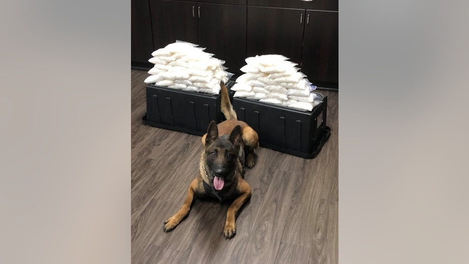 West Covina police K-9 Rye is shown with the 60 pounds of meth he helped find.
