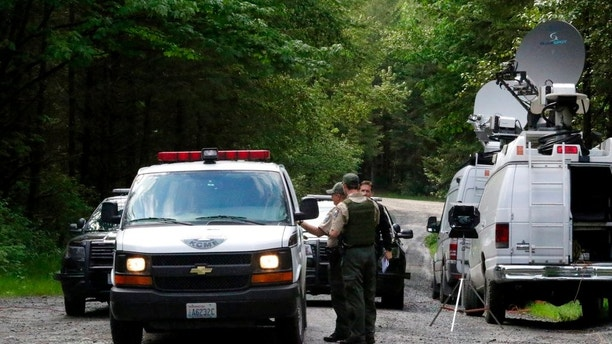 Washington State Fish and Wildlife Police confer with an individual from the King County Medical Examiner's office on a remote gravel road above Snoqualmie, Wash., following a fatal cougar attack, Saturday, May 19, 2018.  One man was killed and another seriously injured when they encountered a cougar Saturday while mountain biking in Washington state, officials said. (Alan Berner/The Seattle Times via AP)