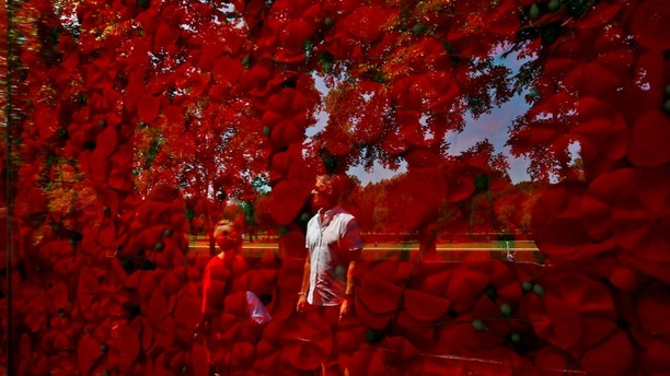A man is seen reflected on a temporary memorial made of over 600,000 poppies ahead of Memorial Day at the National Mall in Washington, U.S., May 25, 2018. REUTERS/Carlos Barria - RC149872B1B0