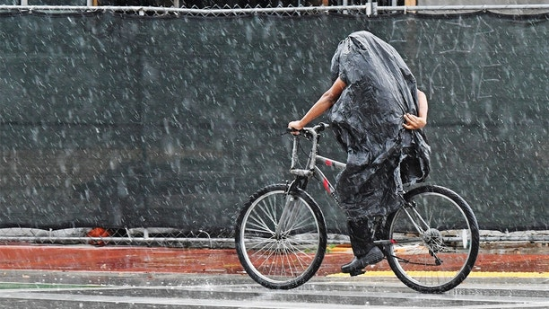 A cyclist tries to stay dry along Collins Ave. in Miami Beach, Florida, Friday, May 25, 2018. Rain from subtropical storm Alberto is expected to wet the Memorial Day weekend. (Jim Rassol / South Florida Sun-Sentinel via AP)
