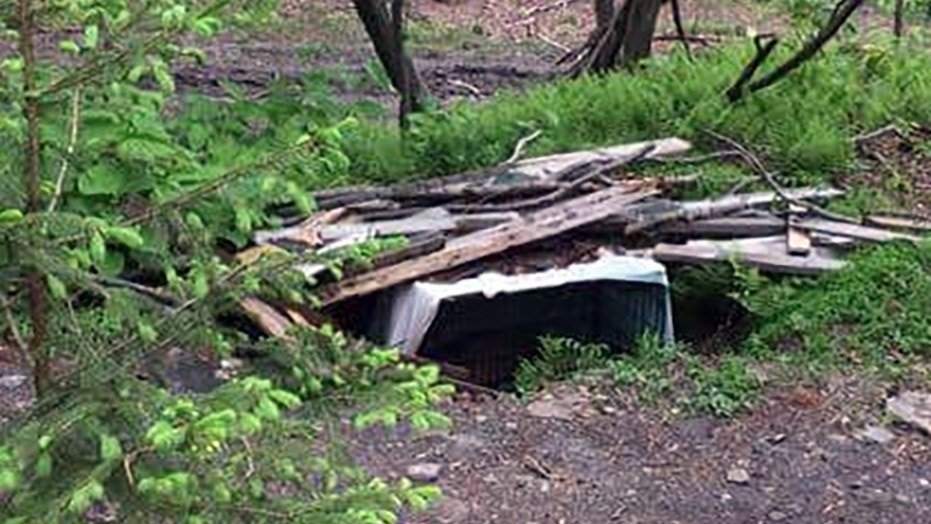 A dog died after being buried in a locked cage in the woods in Pennsylvania, according to a report.
