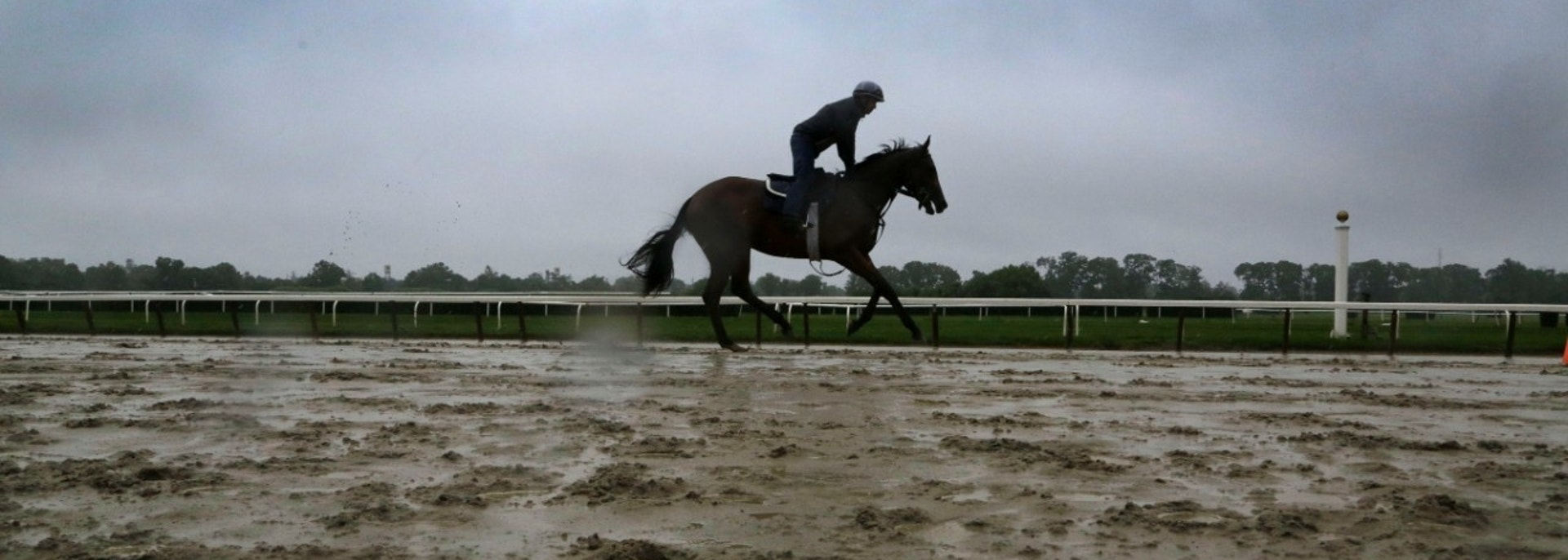 A horse gallops on the rain-soaked track at Belmont Park during a morning workout Friday, June 7, 2013 in Elmont, N.Y. Saturday is the Belmont Stakes horse race. (AP Photo/Mark Lennihan)