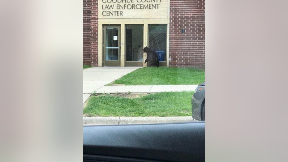 """A so-called """"friendly visitor"""" stopped by a Minnesota sheriff's office on Friday, authorities say."""