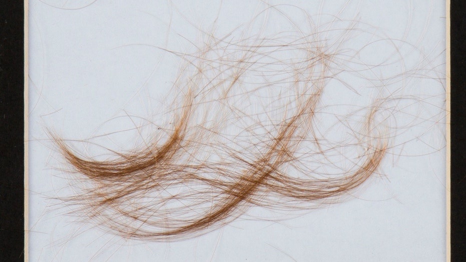 A lock of hair that experts say came from Lt. Col. George Armstrong Custer was sold at auction Saturday for $12,500.