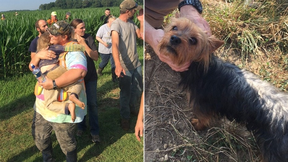 A 3-year-old girl spent the night in a Missouri cornfield with her faithful dog by her side.
