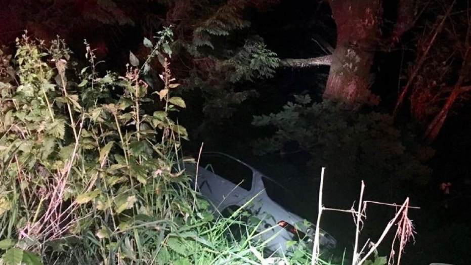 A 20-year-old driver was distracted by a burrito and crashed into plants on the side of the road, Oregon police said.