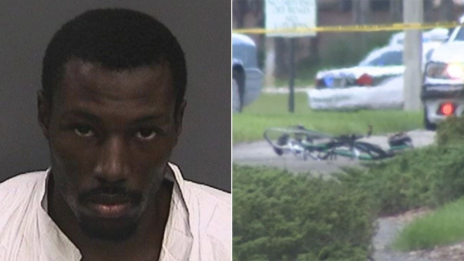 Mikese Morse is in custody after striking a family who were riding their bikes in the Tampa area Sunday, police say.