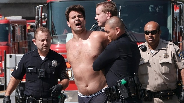 Los Angeles police officer arrest a man after he jumped from a freeway sign onto a safety airbag in downtown Los Angeles, Wednesday, June 27, 2018. The man suspended banners, one about fighting pollution, after climbing onto the sign over State Route 110 during the Wednesday morning rush hour. (AP Photo/Richard Vogel)