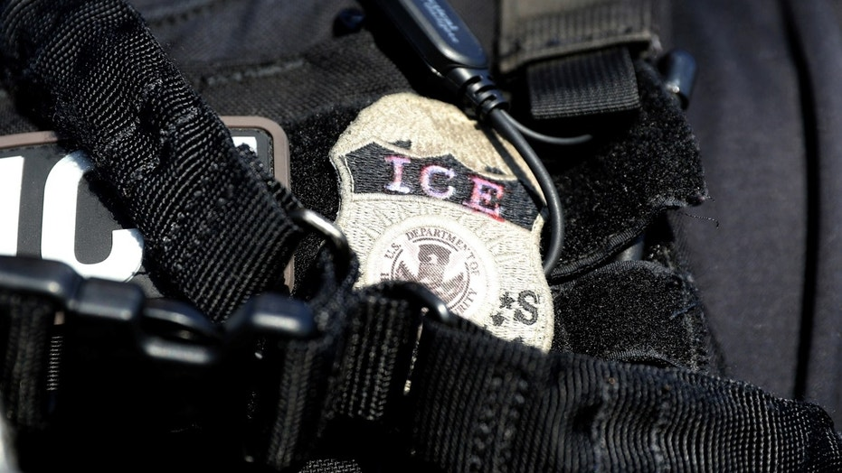 A Kansas City immigration lawyer claimed an ICE agent shoved her to the ground while she tried to reunited a 3-year-old boy with his Honduran mother, before deportation.