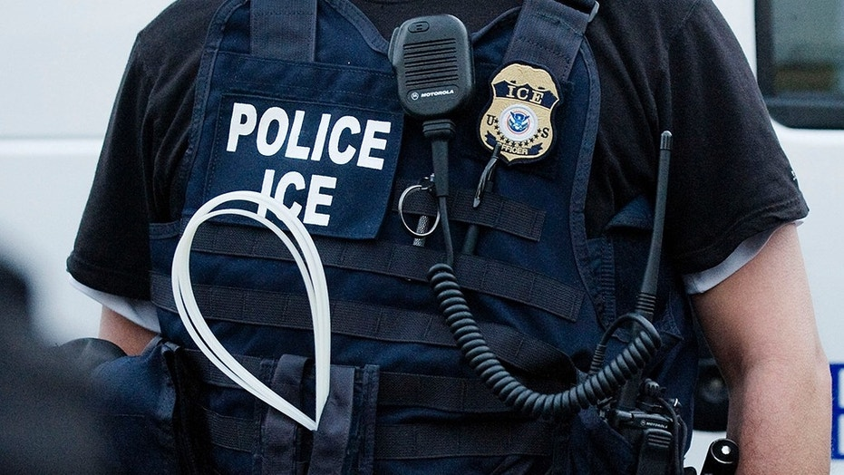 An Immigration and Customs Enforcement officer on patrol in California.