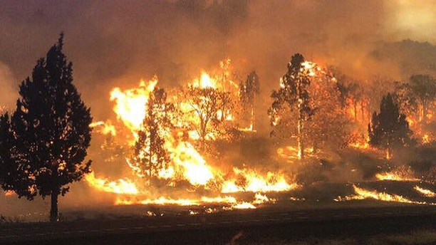 1530980242521 - Firefighters battle to contain wildfires sweeping through California