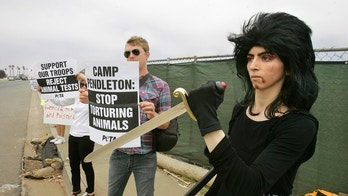 FILE - In this Aug. 12, 2009 file photo, Nasim Aghdam, right, joins members of People for the Ethical for Animals, PETA, protesting at the main gate of Marine Corps base Camp Pendleton in Oceanside, Calif., against the Marine's killings of pigs in a military exercise. Northern California authorities say the woman, who shot and wounded three people at YouTube headquarters in April 2018, died of a self-inflicted gunshot to the heart. (Charlie Neuman/The San Diego Union-Tribune via AP, file)