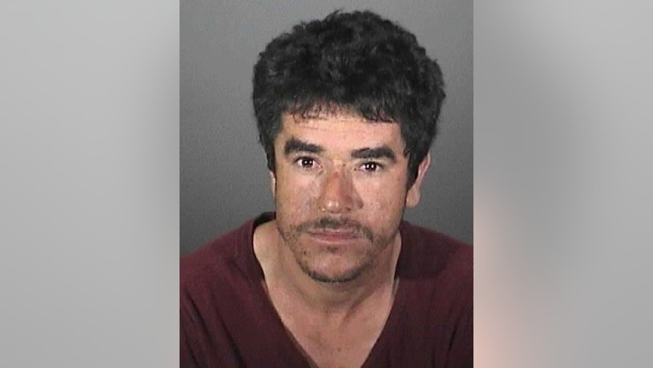California police announced Thursday the capture of a suspect allegedly connected to a chainsaw attack on a woman a day earlier.