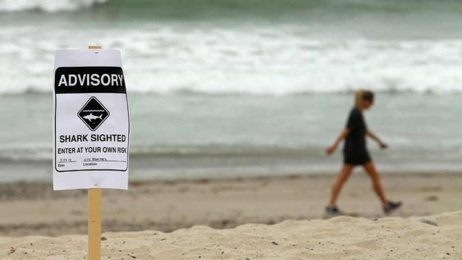 Two people were allegedly attacked by sharks in Fernandina Beach, Florida, on July 13.