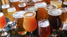 Craft Beer Tasting Flight. The U.S. now has more beer styles (150+) and brands (20,000+) to choose from than any other market in the world. More than 5,000 breweries are responsible for the beer brands available in the U.S. and the Brewers Association estimates more than 2,000 craft breweries are in the planning stages.