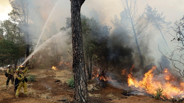 Firefighters hose down flames from an advancing wildfire Saturday, July 28, 2018, in Redding, Calif. (AP Photo/Marcio Jose Sanchez)