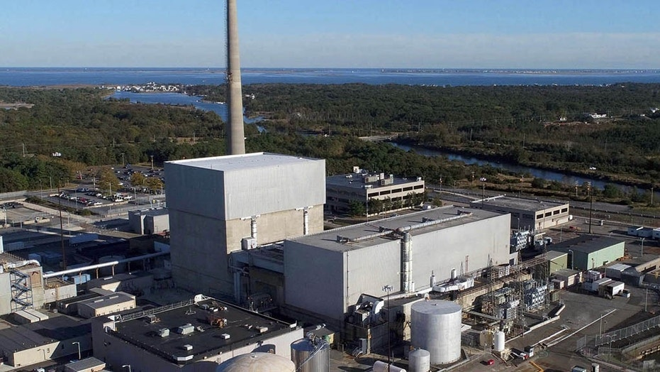 The sale of the nearly 50-year-old Oyster Creek Generating Station in southern New Jersey could result in the plant's being decommissioned in the next eight years. (Excelon)