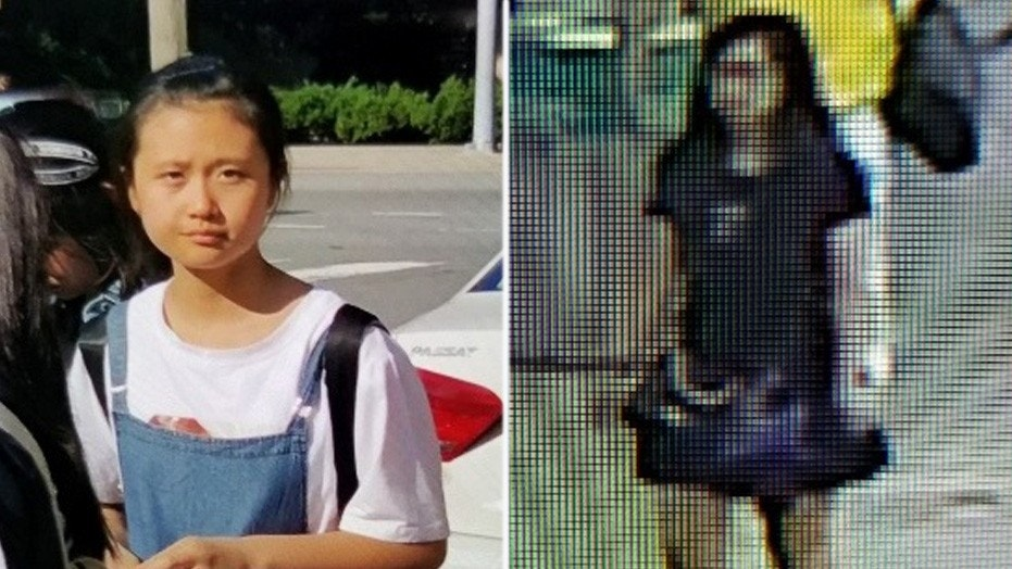 Girl visiting US  abducted at Reagan National Airport