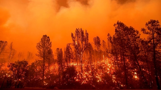 The Carr Fire burns along Highway 299 in Redding, Calif., on Thursday, July 26, 2018. (AP Photo/Noah Berger, File)