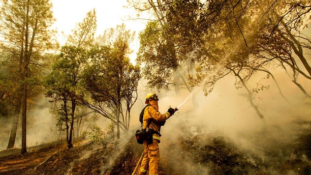 Firefighter Scott Brown sprays water on a backfire while battling the Carr Fire in Redding, Calif., on Saturday, July 28, 2018. (AP Photo/Noah Berger, File)