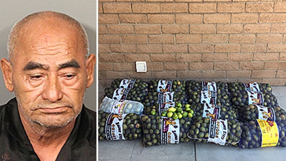 Dionicio Fierros, 69, is said to have stolen 800 pounds of freshly picked lemons from a farm in Riverside, California, after the sheriff's department.