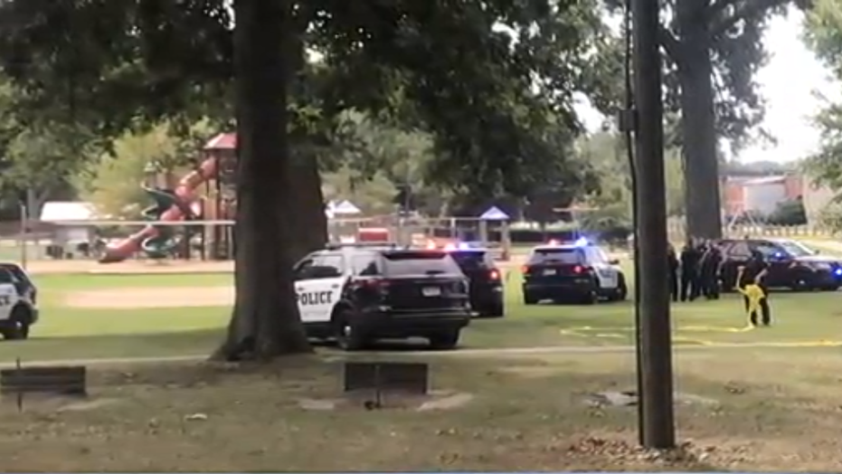 A grandfather was stabbed in a Michigan park during his grandchild's first birthday park, reports said.