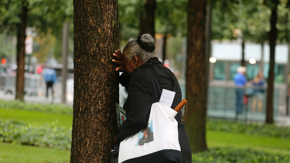 A woman weeps by herself as she leans against a tree during a ceremony marking the 17th anniversary of the terrorist attacks on the United States. Tuesday, Sept. 11, 2018, at the World Trade Center in New York. (AP Photo/Mark Lennihan)