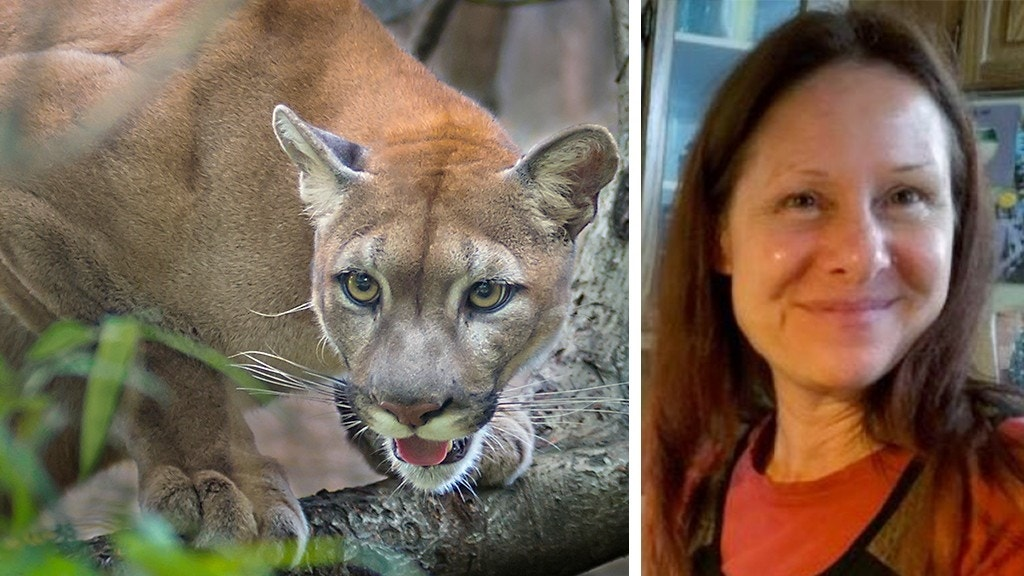 """bon air cougar women But there are no links to the growing number of """"cougar"""" dating sites, matching  older women with younger men, on content sites that show up in."""