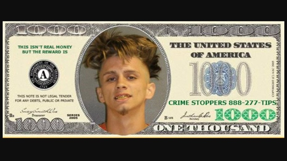 A Florida sheriff's office is promising 'All the Ziggy bills you can carry' if someone can help them track down accused gunman Zachary Dreiling.
