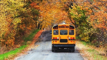 A school bus travels a narrow backroad in late Autumn.