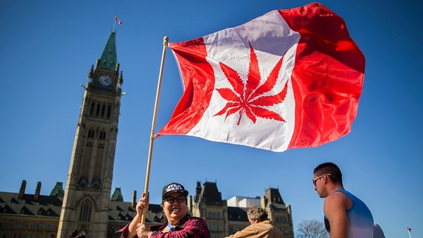 A woman waves a flag with a marijuana leef on it next to a group gathered to celebrate National Marijuana Day on Parliament Hill in Ottawa, Canada on April 20, 2016.  
