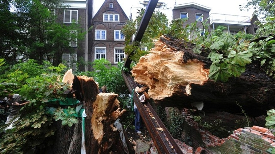 Aug. 23: The splintered trunk of the monumental chestnut tree, which comforted Anne Frank while she hid from the Nazis during World War II,  is seen after it fell over during a storm in Amsterdam.
