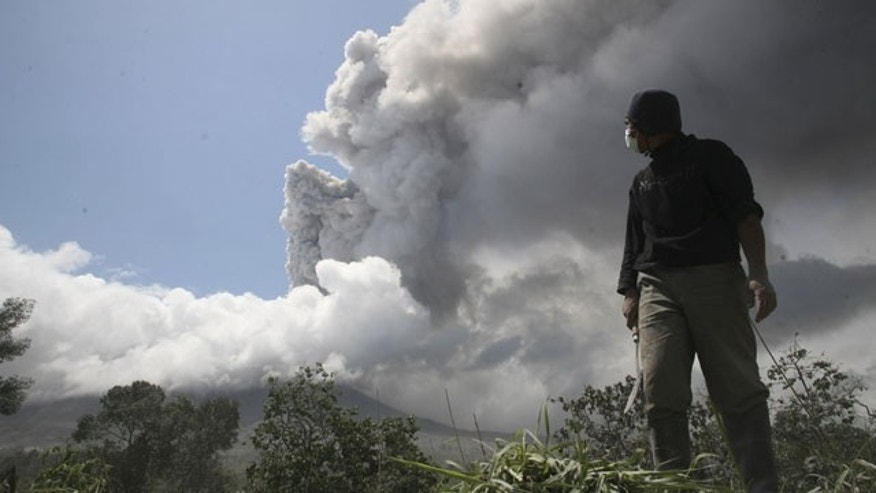 Nov. 10: A man stands on his farm as he looks at volcanic ash rising from Mount Merapi in Magelang, Indonesia. Volcanic debris has been spewing for more than two weeks, killing at least 191 people and impeding travel.