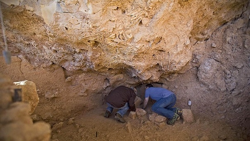 Dec. 27: Professor Avi Gopher, left, and Dr. Ran Barkai from the Institute of Archeology of Tel Aviv University inspect an archeological site where ancient teeth were discovered near Rosh Haain, central Israel.