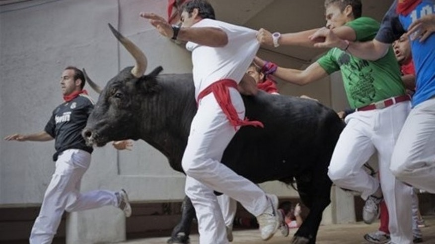 Earlier this month, revelers run next to a Nunez del Cubillo's ranch fighting bull during the final running of the bulls at the San Fermin fiestas.