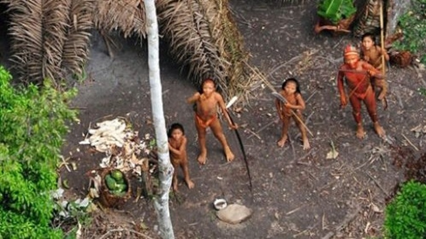 Members of an uncontacted tribe painted with red and black vegetable dye watch a Brazilian government plane overhead.