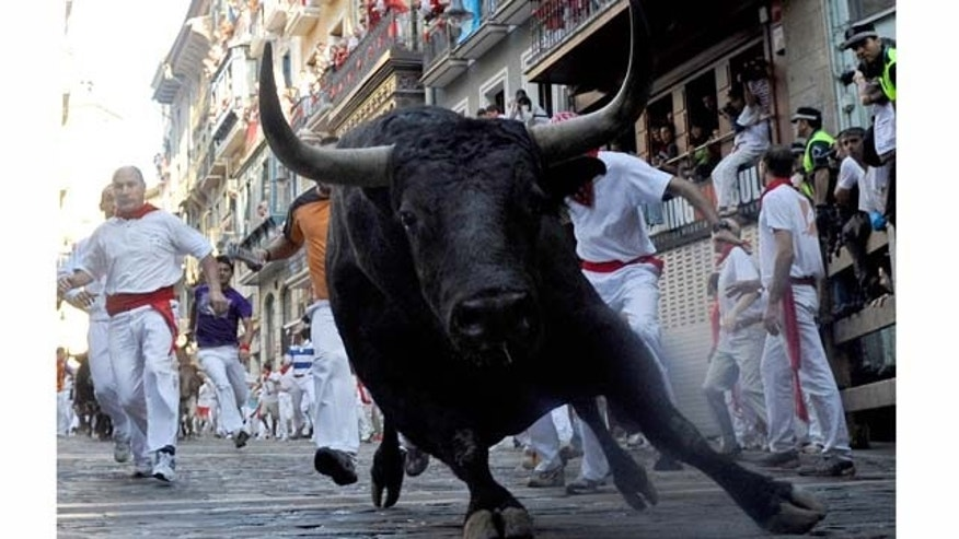 PAMPLONA, SPAIN - JULY 11:  A fighting bull goes around Estafeta corner on the sixth day of the San Fermin running-of-the-bulls on July 11, 2011 in Pamplona, Spain. A Pamplona-like event is being considered in a suburb of Phoenix.  (Photo by Denis Doyle/Getty Images)
