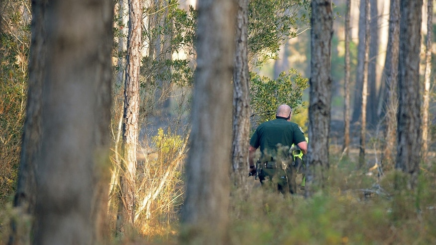 A Clay County Sheriff's deputy walks by smoldering brush on his way to wreckage from a helicopter crash in an area west of Green Cove Springs, Fla. Monday afternoon, Dec. 26, 2011. The helicopter was enroute to Gainesville from Mayo Clinic in Jacksonville to receive a heart for a transplant when it crashed. The three people who were in the helicopter died at the scene. (AP Photo/The Florida Times-Union, Kelly Jordan)