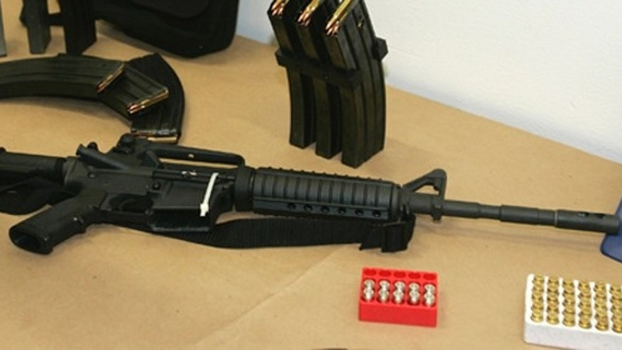 A Bushmaster AR-15 semi-automatic rifle and ammunition.