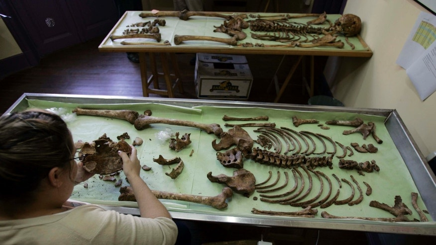 March 11, 2008  FILE photo. Mariana Selva, from the independent Argentine Forensic Anthropology Team, examines an unidentified skeleton at a forensic lab as part of an effort to identify the victims of Argentina's Dirty War in Buenos Aires, Argentina.