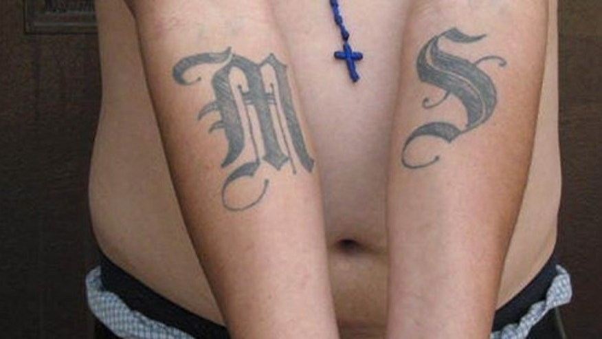 This handout photo provided by US Immigration and Customs Enforcement, taken June 23, 2008 in Washington, shows an example of a tattoo of the gang Mara Salvatrucha (MS-13). The Obama administration has labeled a violent Central American street gang as an international criminal organization subject to U.S. government sanctions, the first time this designation has been given to such a group.  (AP Photo/Michael Johnson, ICE)