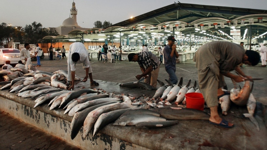 FILE - In this Tuesday, June 12, 2012 file photo, workers cut shark fins  at a fish market in Dubai , United Arab Emirates. Fishermen across the globe kill as many as 70 million sharks each year for their fins, which can sell for $700 a pound (450 grams), while the soup prized for Chinese banquets and weddings can cost $100 a bowl. The fin trade has devastated several species including hammerheads, oceanic whitetip, blue, threshers and silky and contributed to 181 shark and ray species being listed by the International Union for Conservation of Nature as threatened with extinction. The trade is legal, though efforts are being made to ban the practice of &quot&#x3b;finning&quot&#x3b; hacking the fins off of sharks and throwing the rest overboard, often when they are still alive.  Four years ago, under international pressure, the UAE joined the growing number of countries banning the practice.  (AP Photo/Kamran Jebreili, File)