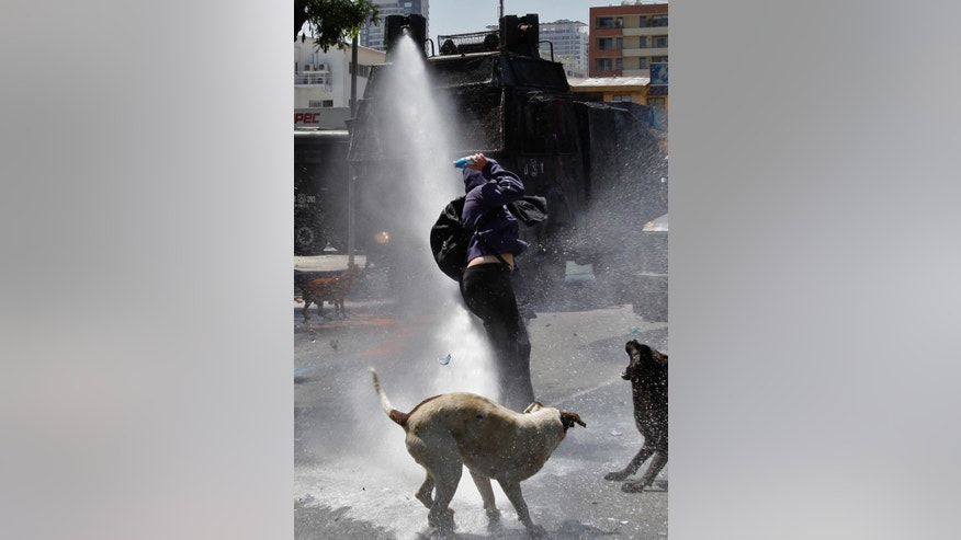FILE - In this Oct. 19, 2011 file photo, dogs bark as a hooded youth gets into position to throw a bottle filled with paint as he is sprayed by a police water cannon in Santiago, Chile. Free-roaming dogs number in the millions in Chile, creating a situation the nation's Humane Society calls alarming. (AP Photo/Aliosha Marquez, File)