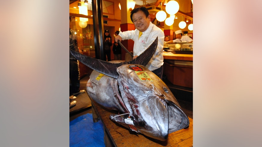 Kiyoshi Kimura, president of Kiyomura Co., poses with a bluefin tuna in front of his Sushi Zanmai restaurant near Tsukiji fish market in Tokyo Saturday, Jan. 5, 2013. The bluefin tuna caught off northeastern Japan fetched a record 155.40 million yen, or about $1,763,000, in the first auction of the year at the fish market. The tuna was caught off Oma in Aomori prefecture. (AP Photo/Shuji Kajiyama)