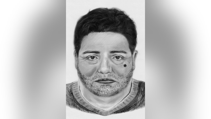 This identikit picture made available by German police shows an artist's sketch of a man who is considered to be a possible suspect in a bank robbery in Berlin. German police have received a flurry of tips after releasing images of the 45-meter (150-feet) tunnel dug by robbers who raided the safe deposit room of a Berlin bank last weekend. Spokeswoman Diana Born said Friday, Jan 18, 2013, that a special task force is sifting through 90 tips received from members of the public over the past days. (AP Photo/German Police)