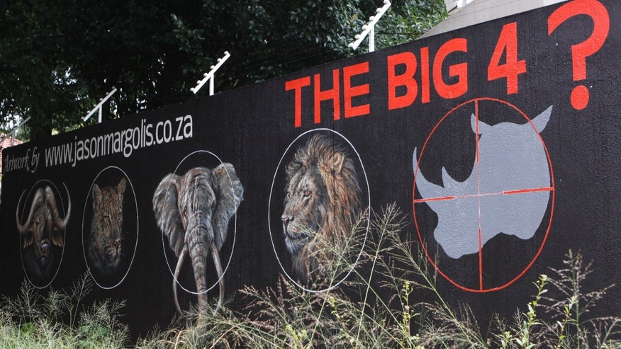 "A mural painted on a suburban wall in Johannesburg, South Africa calls for the halt to rhino poaching, Friday, Dec. 18, 2013 in a bid to save the species from extinction due to killings for the rhinos horn. Veterinarians are racing to learn more about rhino anatomy so they can swiftly treat survivors of attacks by poachers whose arsenal has included assault rifles, high-caliber weapons that can fell a rhino with a single shot and drug-tipped darts that knock it out. The big five game animals referred to in the mural as the ""big four"" in the future, are lion, African elephant, Cape buffalo, leopard, and rhino.  (AP Photo/Denis Farrell)"