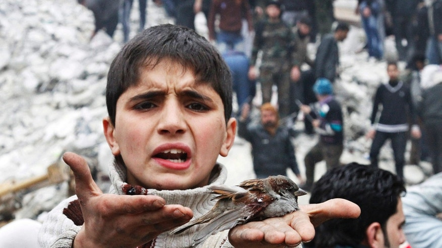 A Syrian boy holds a bird in his hand that he said was injured in a government airstrike hit the neighborhood of Ansari, in Aleppo, Syria, Sunday, Feb. 3, 2013.  The Britain-based activist group Syrian Observatory for Human Rights, which opposes the regime, said government troops bombarded a building in Aleppo's rebel-held neighborhood of Eastern Ansari that killed over 10 people, including at least five children. (AP Photo/Abdullah al-Yassin)